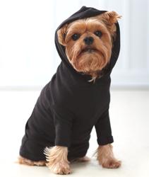 Doggiewear