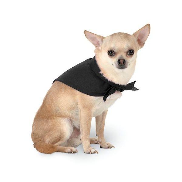 3905 Doggie Skins Bandana  - 3905