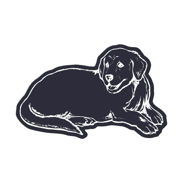 Dog Flexible Magnet - Made of flexible 30 mil permanent magnet to adhere to any steel surface