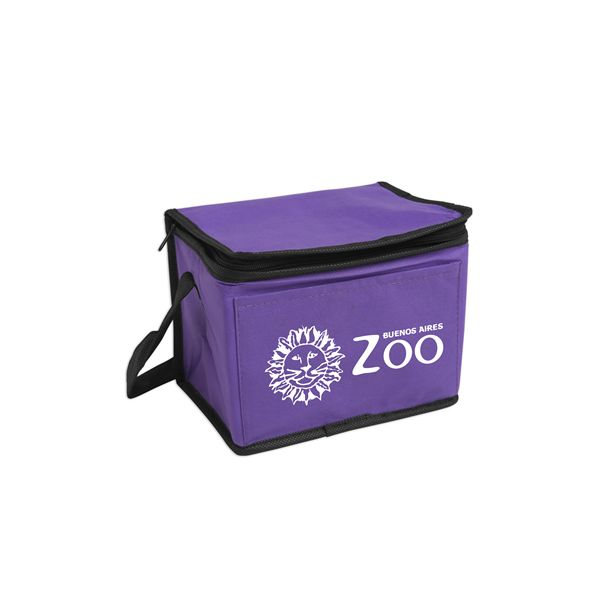 "Non-Woven 6-Pack Cooler - Constructed of 80 gsm non-woven polypropylene, this cooler featuresa pocket on the front, insulated PEVA lining, zipper closure and 16""carrying handle"
