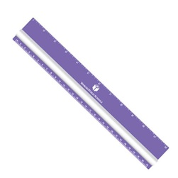 "12"" Magnifying Ruler"